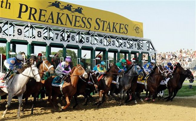 Preakness Stakes: Concert Tour Favored to Win if Medina Spirit is Out