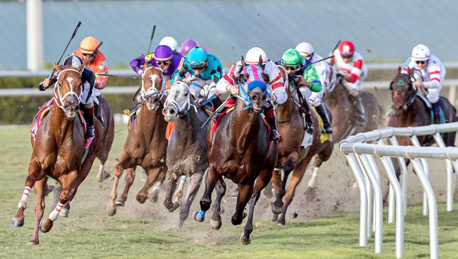 Palace Pier Books Spot At Breeders' Cup, Kaufymaker Falls Short In Coventry Stakes