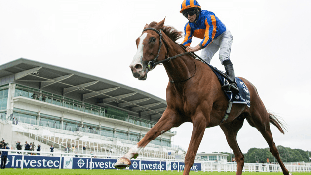Love Conquers All To Book Breeders' Cup Spot, Dettori Continues To Smash Records