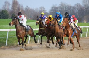 Lone Star Park Racing Preview
