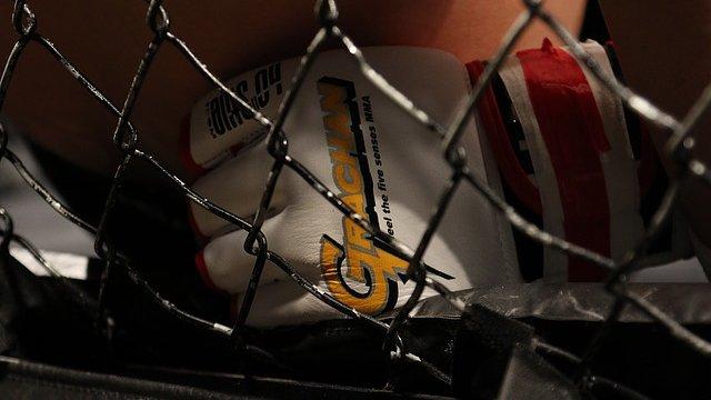 UFC Vegas 34: Jared Cannonier vs Kelvin Gastelum Odds