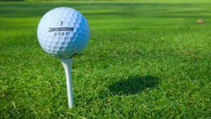 Pure Insurance Championship Odds Favor Alker and Goosen